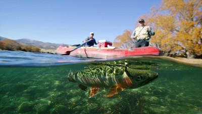 Jak dobrze łowić ryby