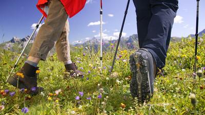 Jak używać Nordic Walking