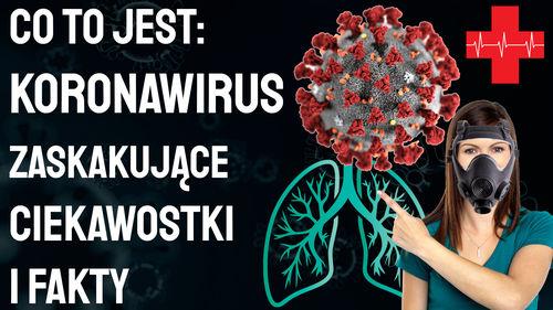Co to jest Koronawirus – ciekawostki i fakty