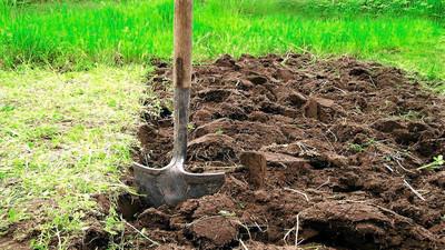 Jak skopać i przekopać ziemię na działce