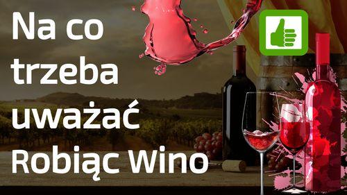 Robisz Wino - na to trzeba uważać