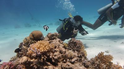 Jak nurkować i pływać pod wodą