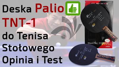 Deska Palio TNT 1 do Tenisa Stołowego – Opinia i Test