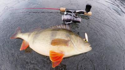 Porady wędkarskie – przydatne Informacje na ryby
