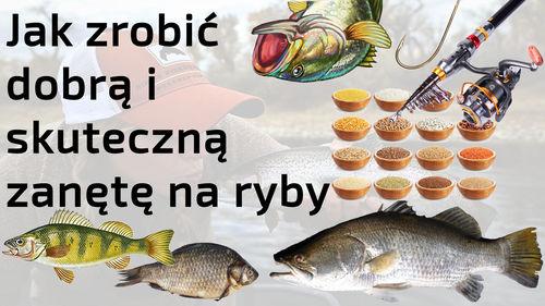Jak zrobić dobrą i skuteczną zanętę na ryby