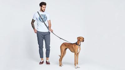Jaką wybrać smycz dla psa