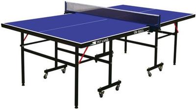 Jaki wybrać stół do Tenisa Stołowego