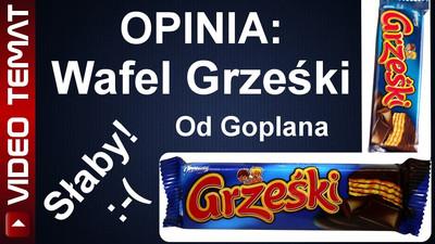 Wafelek w czekoladzie Grześki - Opinia