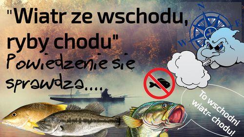 Wiatr ze wschodu, ryby chodu  – wędkarskie powiedzenie