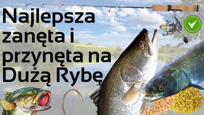 Najlepsza zanęta i przynęta na dużą rybę – jak zrobić